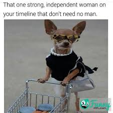 Independent Woman Meme - strong independent woman that needs no man funnyppl com