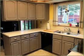 Pre Assembled Kitchen Cabinets 100 Premade Kitchen Cabinets American Walnut Pre Assembled
