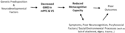 ijms free full text metacognition in early phase psychosis