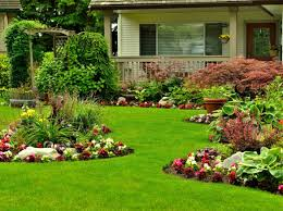 drainage solutions peek lawn care