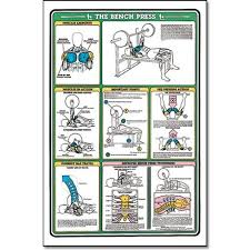 Rep Chart For Bench Press Algra Laminated Chart The Bench Press Fitness Depot