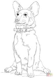 corgi dog coloring page free printable coloring pages