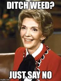 Nancy Meme - nancy reagan imgflip
