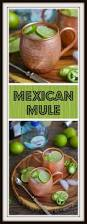 mexican martini meme mexican mule what should i make for