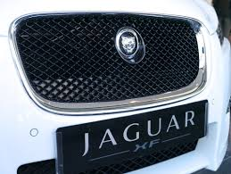 jaguar grill independent u0027s day