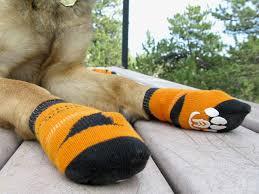 tripawds gear power paws no slip socks for three legged mobility