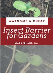 Gardening Pest Control - awesome u0026 cheap insect barrier for gardens learn about effective