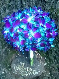 blue orchids royal blue orchid wedding bouquet einmv wedding florals