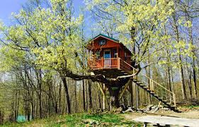 treehouse cabins in canada treehouse accommodations quebec