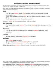 cell membrane coloring worksheet name date period cell membrane