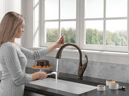Leland Kitchen Faucet by Sink U0026 Faucet Delta Rb Dst Leland Single Handle Pull Down