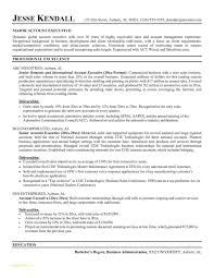 free executive resume lpn resume template free takenosumi
