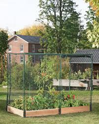 pest free garden raised garden bed with netting gardeners com