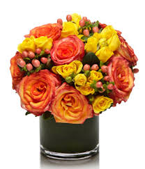 Peach Roses Luxury Blaze At From You Flowers