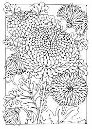 160 colorings images drawings coloring books