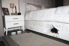 Bunk Bed For Dogs This Bed Has A Tiny Compartment For Your Pet So That You Can Sleep