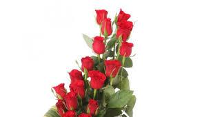 online flowers delivery 100 flowers delivery online best 20 online flower delivery