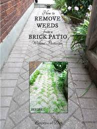 Best Way To Clean Paver Patio How To Remove Weeds From A Brick Pathway Without Pesticides