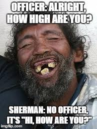 How High Are You Meme - image tagged in sherman imgflip