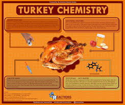 thanksgiving truth infographics american chemical society