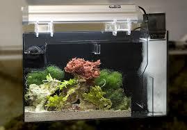 Refugium Light Aquafuge Ps U2014 Cpr Aquatic Inc