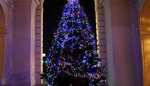 the paseo tree lighting celebration coloradoboulevard net