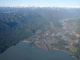 Map Of Lake Washington by Panoramio Photo Of Lake Quinault Washington