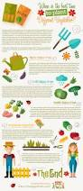 Garden Fertilizer Types - when is the best time to plant different vegetables
