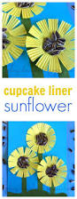 these cupcake liner sunflowers are a fun craft for kids craft