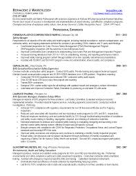 Lawyer Sample Resume by Download Safety Manager Resume Haadyaooverbayresort Com