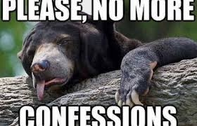 Patient Bear Meme - 35 of the best confession bear meme pictures that will make you want
