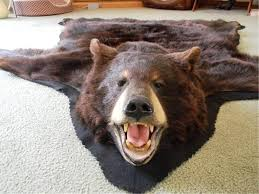 authentic bear skin rug rug designs
