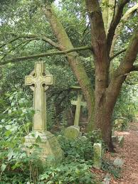 Barnes And Castle Official Website Barnes Old Cemetery An Abandoned Graveyard Being Reclaimed By
