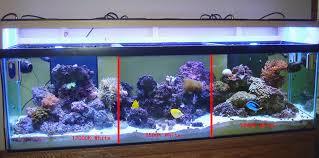 Led Aquarium Lighting Freshwater Aquarium Led Lighting Roselawnlutheran