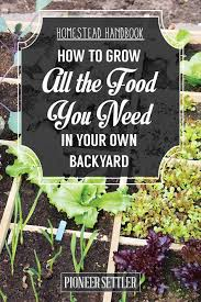 How To Plant A Vegetable Garden In Your Backyard by How To Grow All The Food You Need In Your Backyard Homesteading