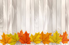 happy thanksgiving background with colorful leaves stock vector