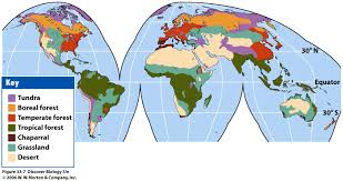 World Map Biomes by Bio 7 Lecture 31 32 Preview