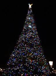 2012 christmas topiary and main christmas tree at epcot extra