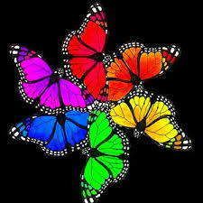 rainbow psychedelic butterflies design trippy butterfly