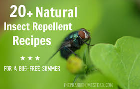 Best Backyard Bug Repellent 20 Homemade Insect Repellent Recipes The Prairie Homestead