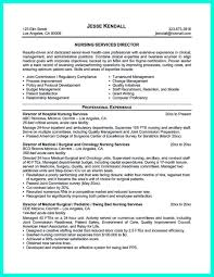 Case Manager Resume Samples Sacrifice And Redemption Durham Essays In Theology 5 Paragraph