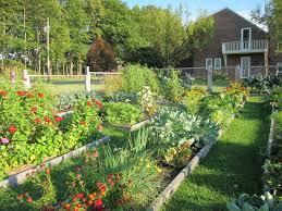 Urban Veggie Garden - 17 urban garden designs ideas design trends premium psd