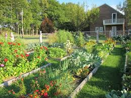 17 urban garden designs ideas design trends premium psd