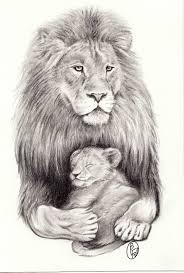 drawn lion lion cub pencil and in color drawn lion lion cub