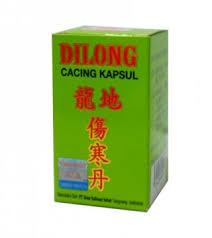 Obat Cacing Dilong dilong kapsul cacing apotek riyo
