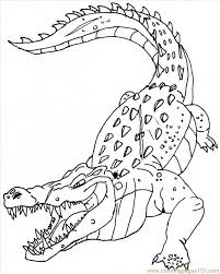 Dessin de coloriage Crocodile à imprimer  CP08847