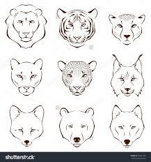 photos simple animal sketch drawing art gallery