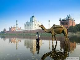 gems of india luxury train tour to india get best deals get