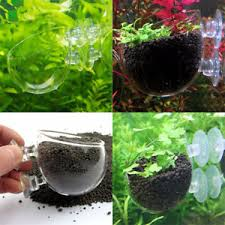 Aquascape Fish Aquatic Plant Crystal Glass Cup Pot For Aquarium Aquascaping Fish