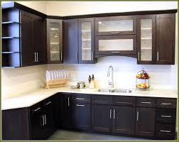 Black Kitchen Cabinets Design Ideas Delightful Kitchen Handles And Knobs Kitchen Cabinets Knobs Vs